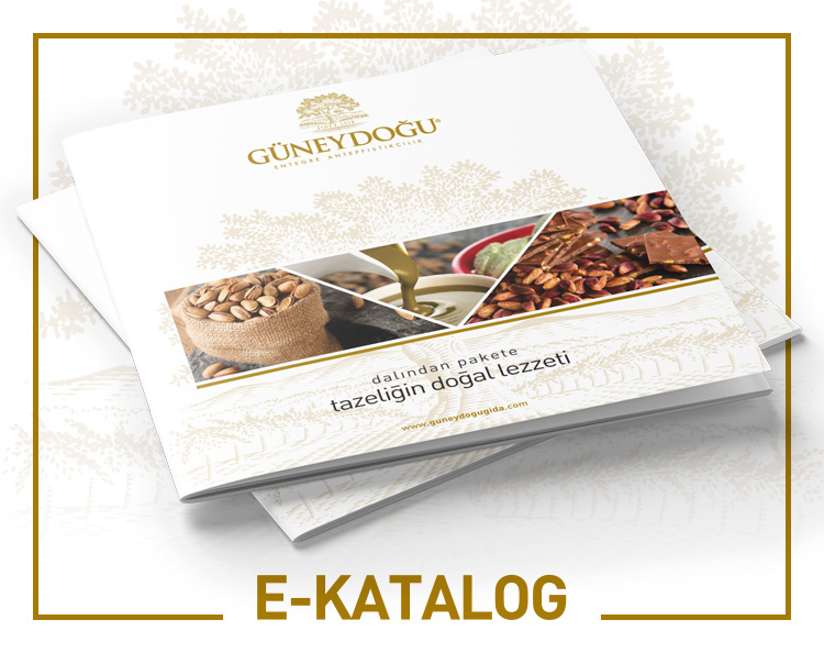 guneydogu_gida_anasayfa_kutucuk_ekatalog_01
