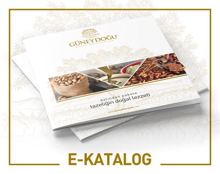 guneydogu_gida_anasayfa_kutucuk_ekatalog_02